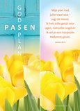 Boekenleggers | Pasen: Gods plan_