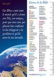 Gemengde set / Boekenleggers in 4 talen_