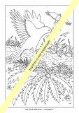 Kleurboek / Reis door de Bijbel / gebonden hardcover met 63 kleurplaten _
