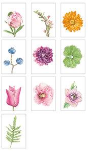 Gemengde set bloemenkaarten