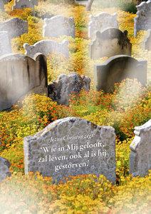 Poster | Wie in Mij gelooft zal leven